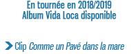 En tournée en 2018/2019 Album Vida Loca disponible Clip Comme un Pavé dans la mare